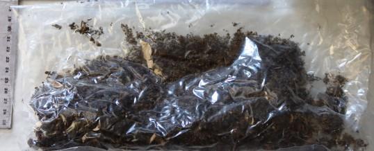 U osam pretresa pronađeni predmeti koji potječu iz krivičnih djela